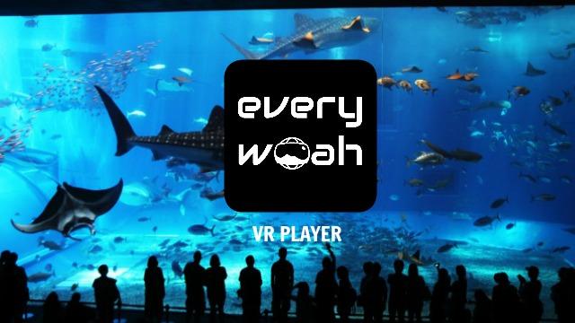 VR Player app